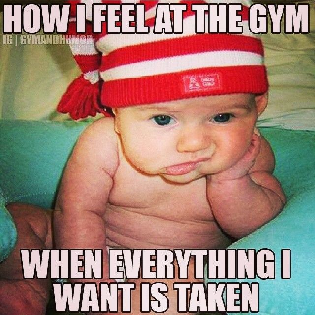How I Feel Gym Fitfam Fitness Funny Humor Funny Babies Hunting Jokes New Year Meme