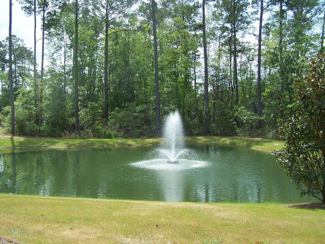 Pond dock house ideas back yard fountain pond large for Building a fountain pond