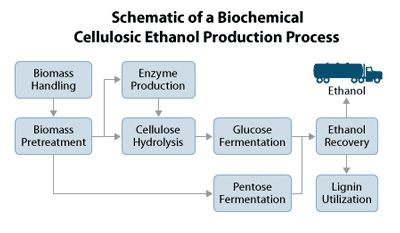 Ethanol From Lignocellulosic Biomass Ethanol Fermentation Biomass
