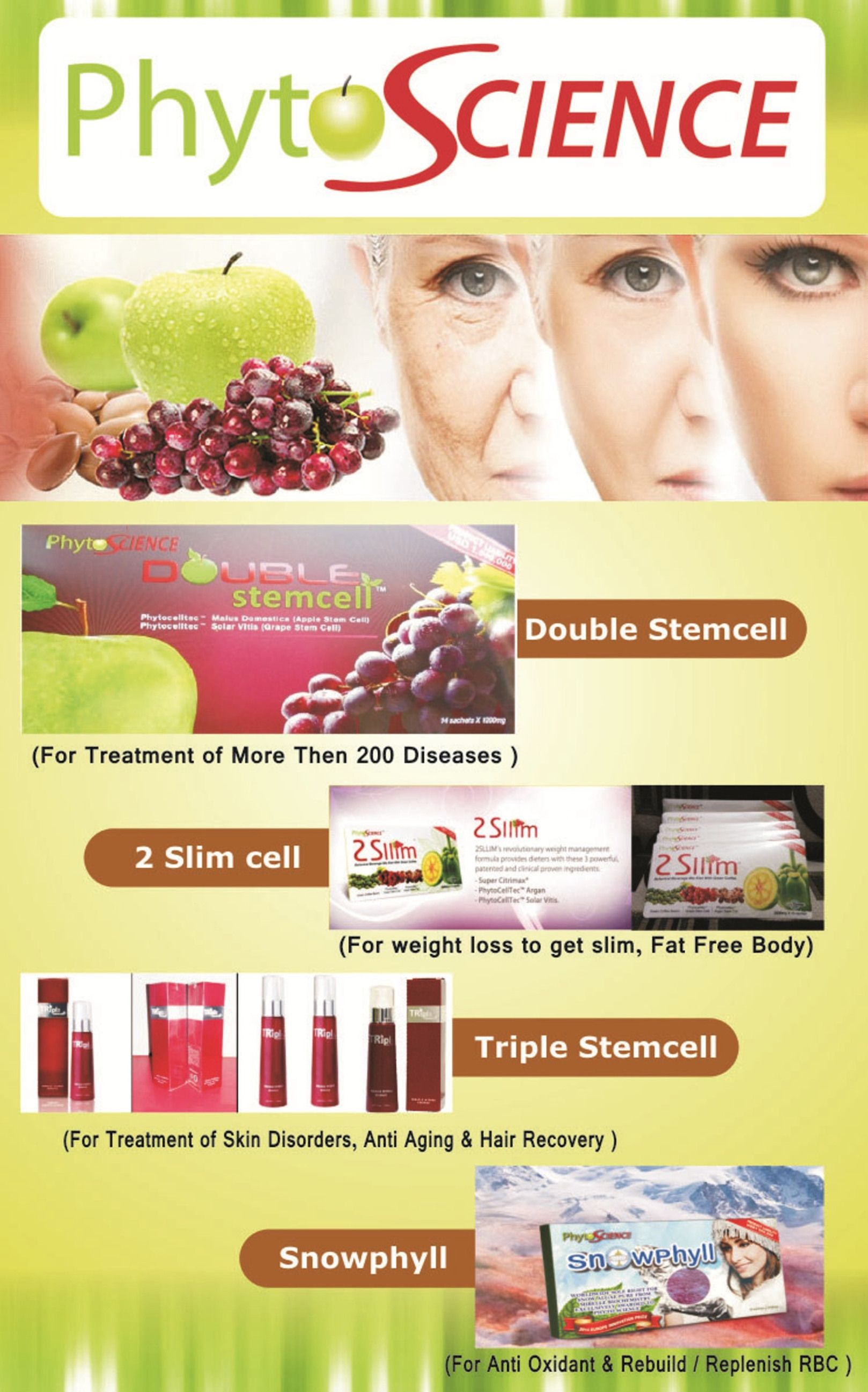 phytoscience double stemcell business plan