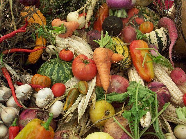 Cornucopia of Vegetables