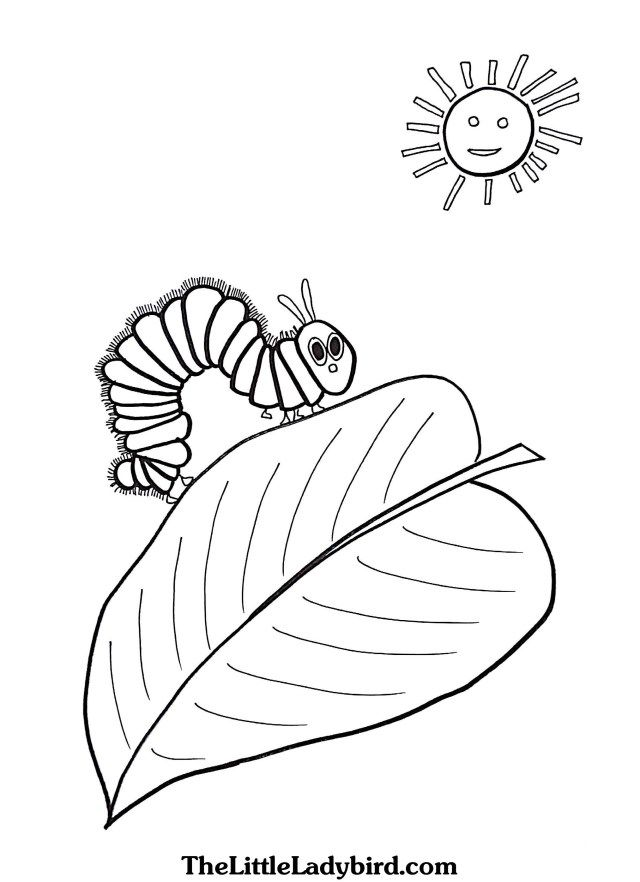 25 Awesome Picture Of Hungry Caterpillar Coloring Pages Raupe