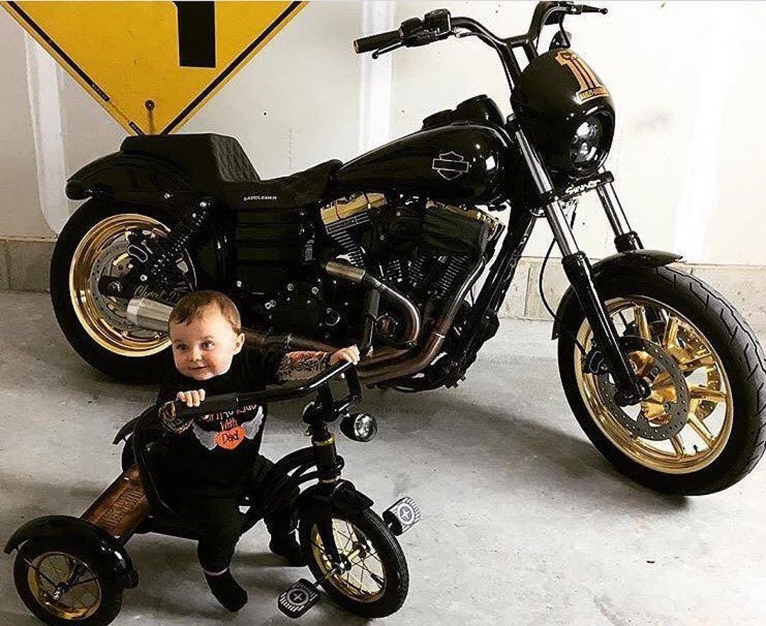 Pin By Johnathan Garcia On Bikelife Harley Davidson Motorcycles