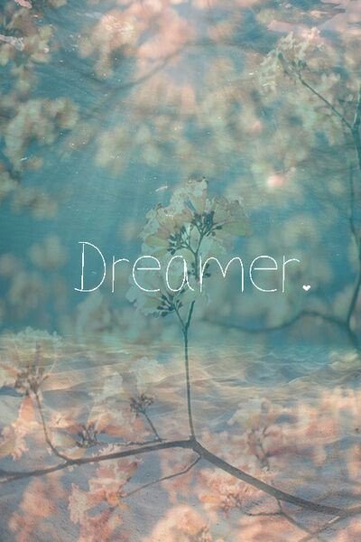 Dreamer Wallpapers Flowers Quotes