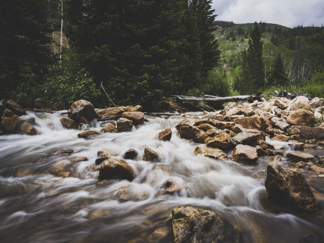 Utah's Shingle Creek Trail Offers HighAltitude Hiking and