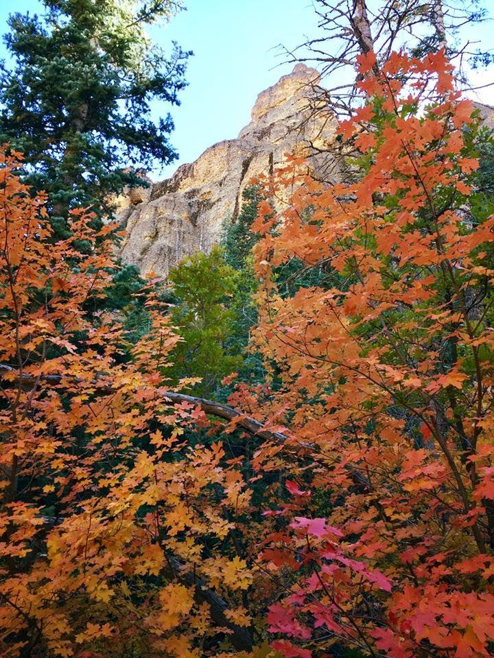 Gorgeous Maple Canyon, UT 10082017