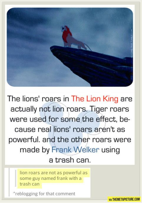 lion roars are not as powerful as some guy named frank with a trash can