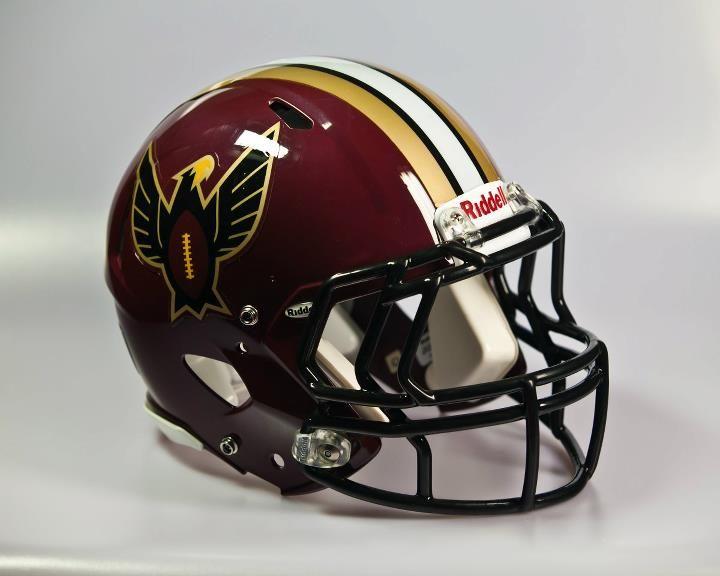 Bangalore warhawks helmet of the efli elite football
