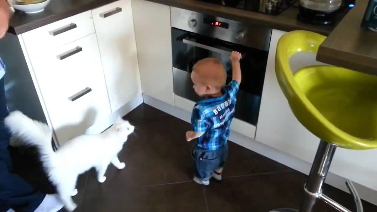 Γάτα φύλακας - Προστατεύει μωρό από φούρνο