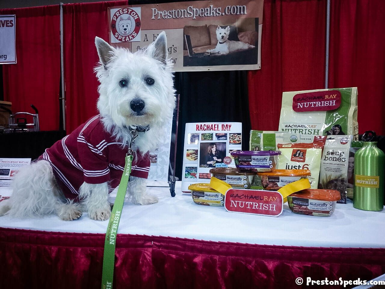 2013 Atlanta Pet Expo Amazing Pet Expos Coverage of from