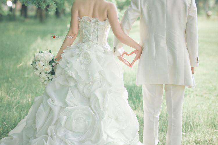 愛媛県松山市の前撮りロケ撮影 Digitalfoco 結婚式 ポーズ ウェディングフォトグラフィー ウェディング 前撮り 参考写真
