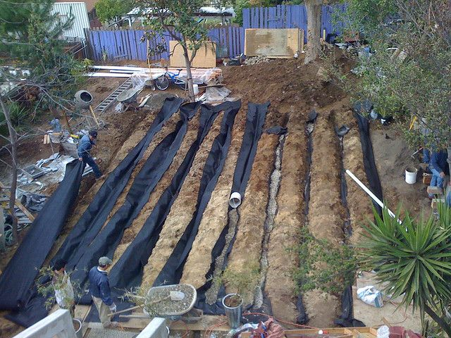 Leach Field System Landscape Fabric Irrigation And Plants