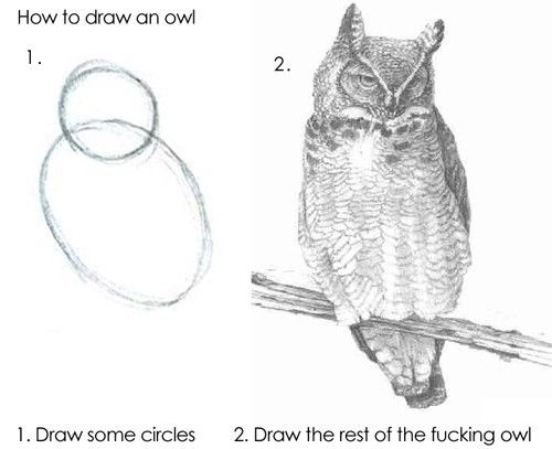 how to draw an owl first draw some circles second draw the rest