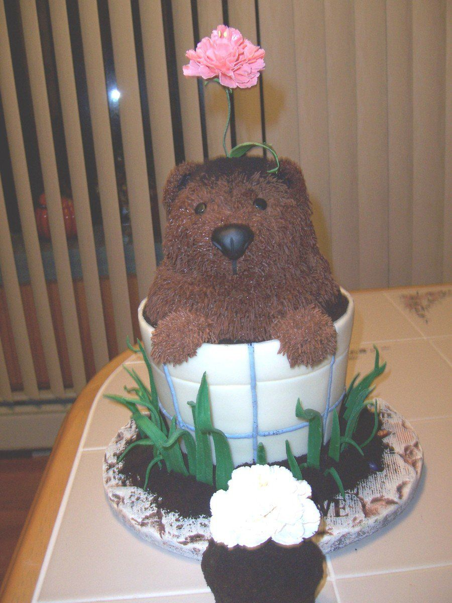 Groundhog Day Flower Pot Birthday Cake