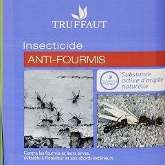 Lutter Efficacement Contre Les Fourmis Jardinerie Truffaut