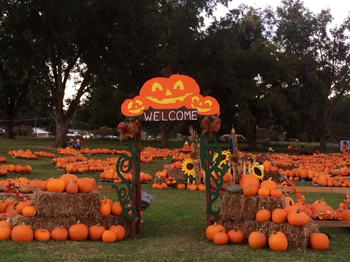 Pumpkin Patch Entrance In 2020 Pumpkin Patch Decoration Pumpkin Decorating Halloween Yard Art