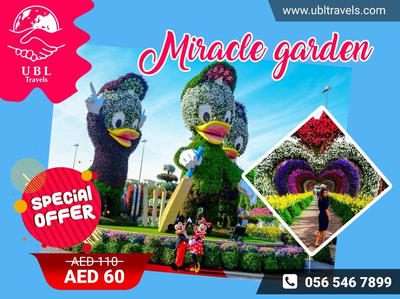 Miracle Garden! in 2020 Miracle garden, Types of flowers