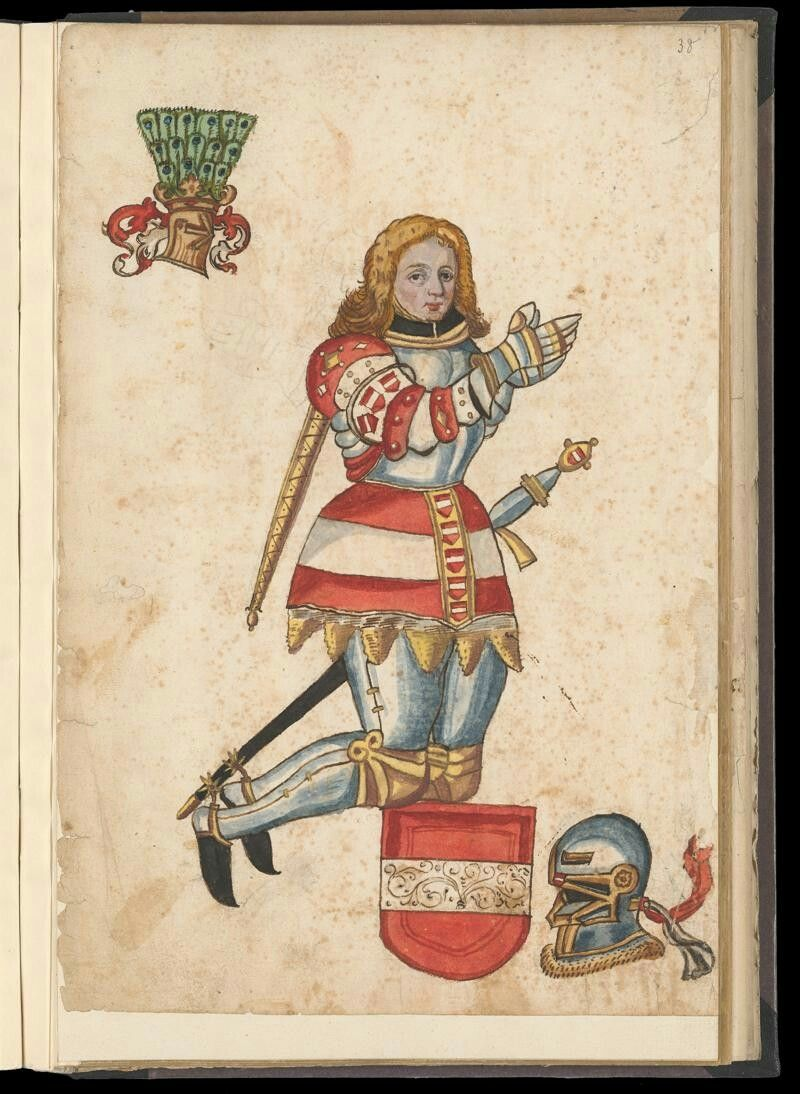 Wappen / Coat of Arms - Ritter / Knight : Habsburg