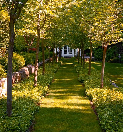 Magnificent garden: formal yet inviting - Traditional Home®