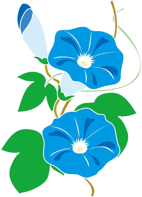 定番の花2 13 あさがおイラスト Clip Art Flowers あさがお イラスト