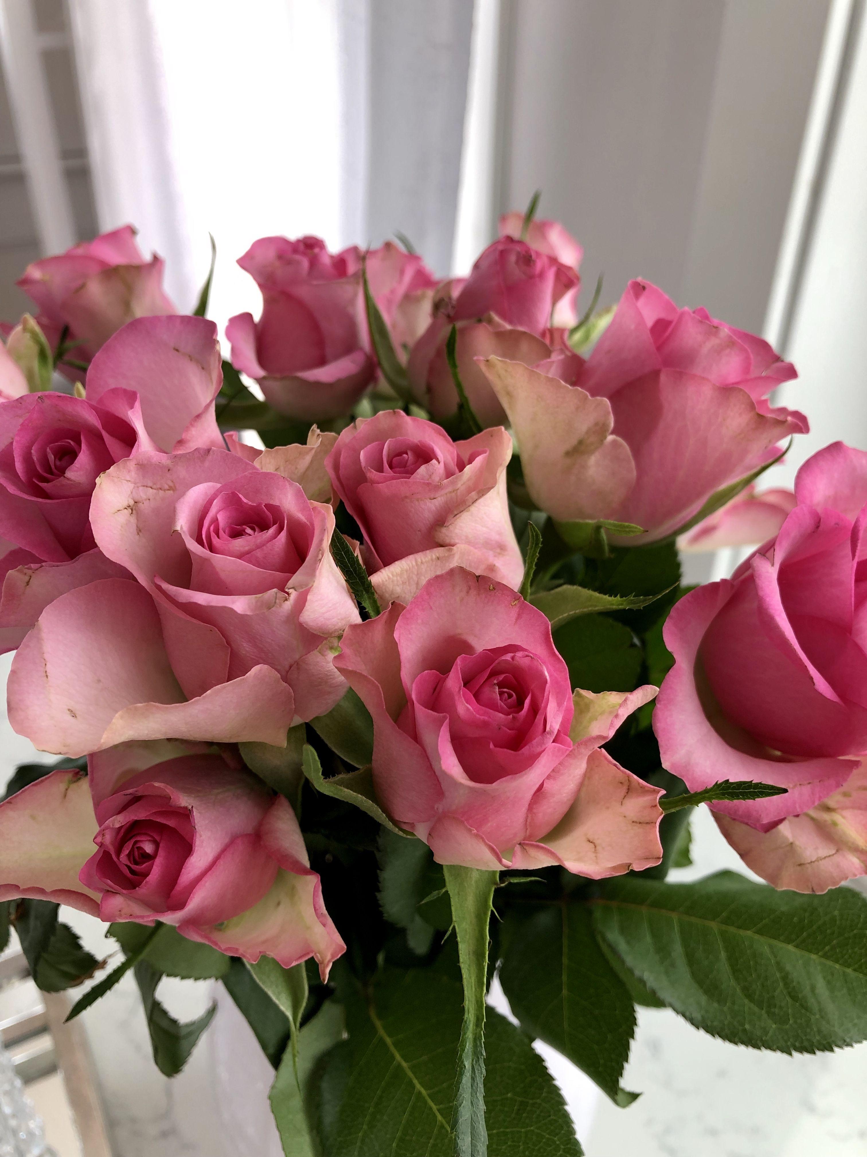 букет роз настоящие фото характеризуется