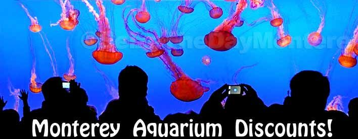 picture relating to Monterey Bay Aquarium Printable Coupon called Monterey Bay Aquarium Lower price Tickets can be experienced and if oneself