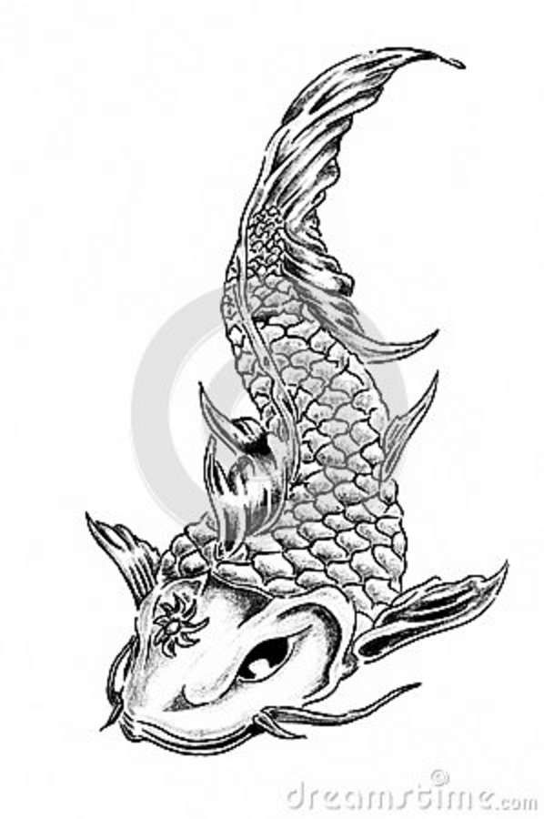 Dragon tattoos for women google search tattoos for Japanese koi fish drawing