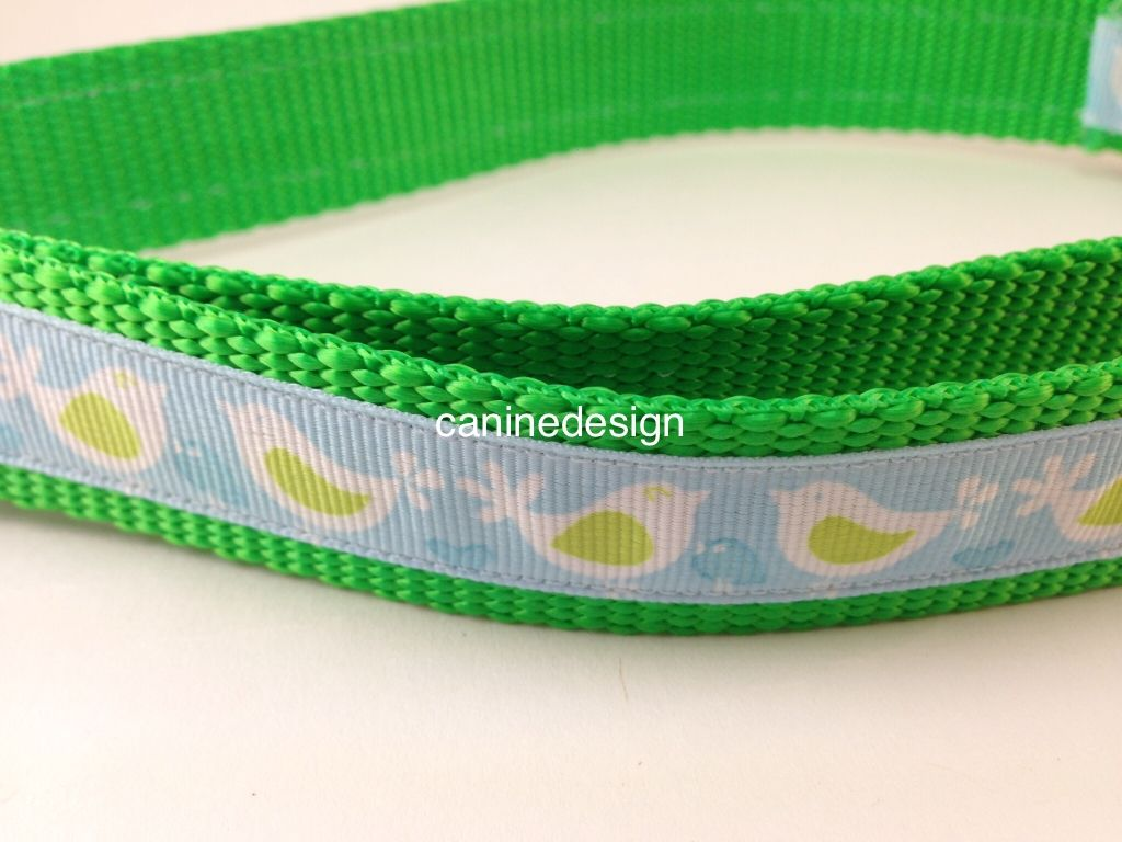 1 inch wide collar adjustable 18-26 inches with blue and green birds
