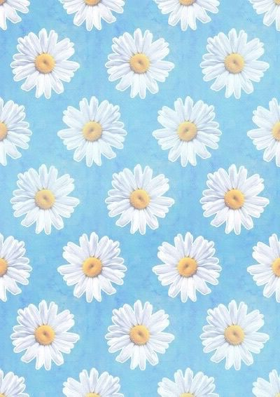 Daisy Iphone Wallpaper Daisy Wallpaper Emoji Wallpaper Cellphone Wallpaper Background daisy flower wallpaper