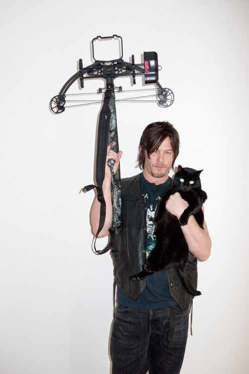 Three Of My Favorite Things Norman Reedus His Cat Eye In The Dark And A Bow Looks Like Raven
