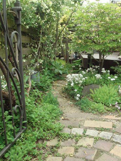 狭い庭 ナチュラルガーデン目指して もっと見る 庭 狭い庭 ガーデン