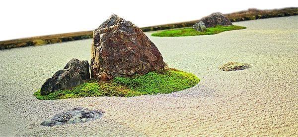 Лаконичный сад камней практически не нуждается в растениях.