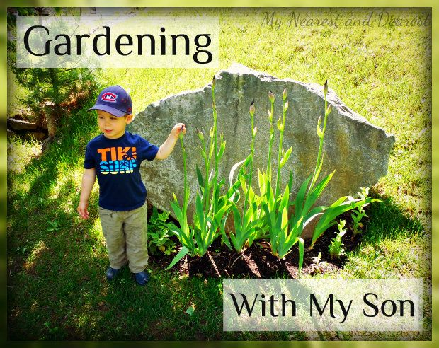 64dc0f965b6f31e38fdcd4ffa192a22b - Simple Essay On My Hobby Gardening