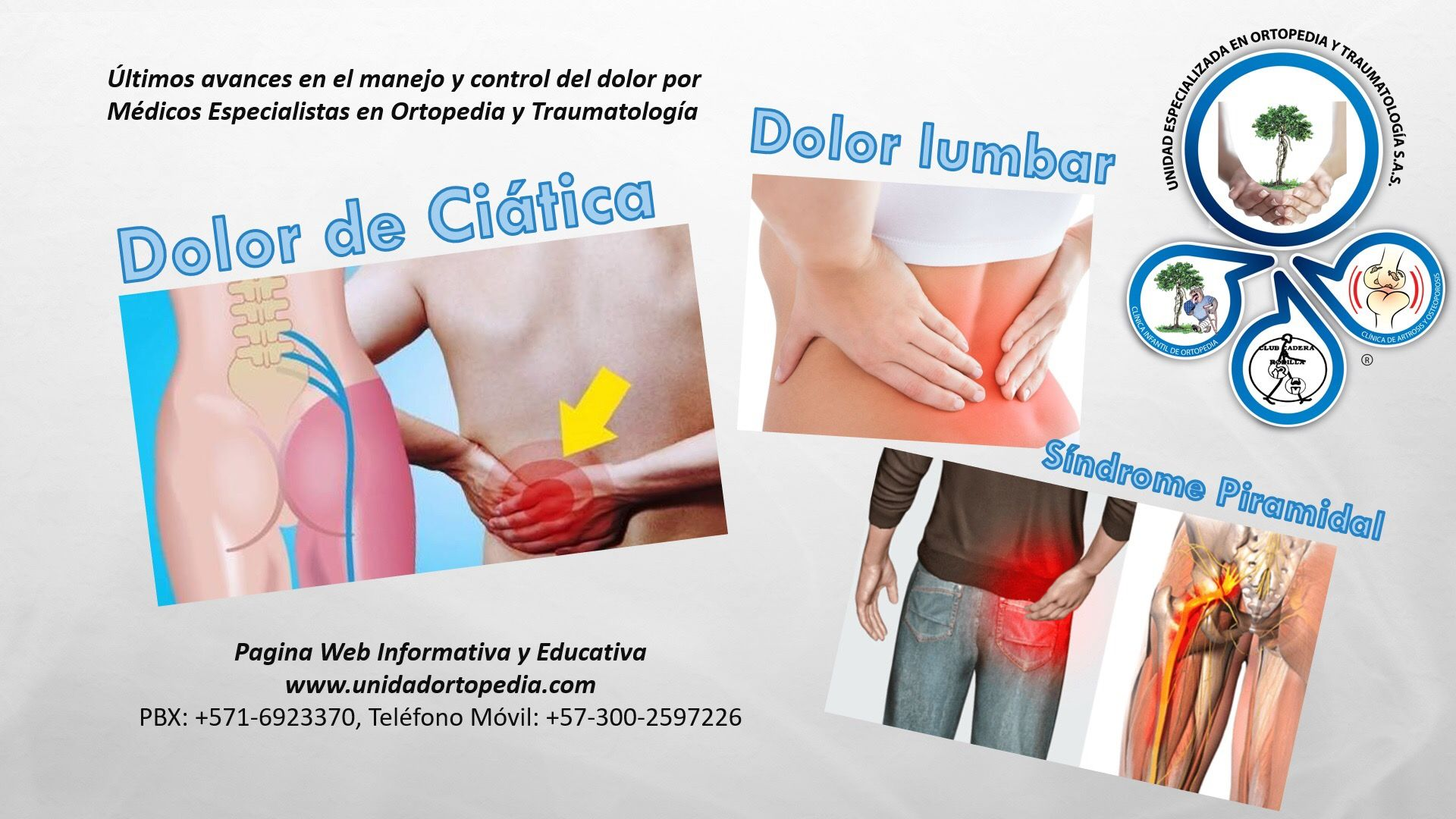 definición médica nervio ciático