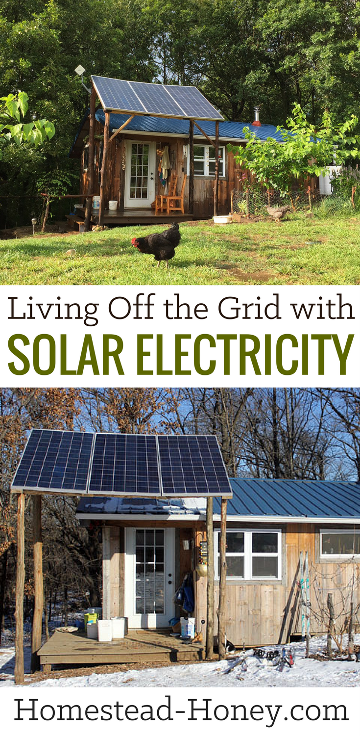 Living Off The Grid With Solar Electricity Homestead Honey Best Solar Panels Solar Electric Solar