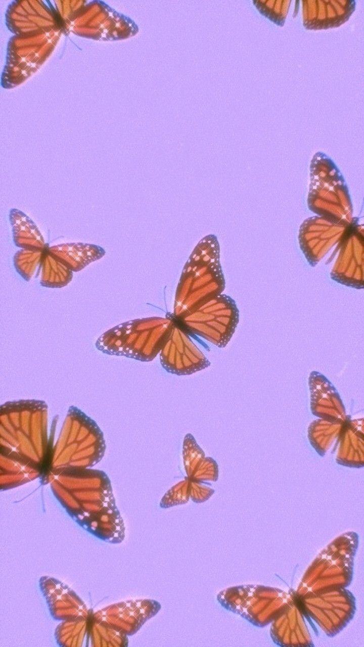 Purple Butterfly Wallpaper Aesthetic : purple, butterfly, wallpaper, aesthetic, Purple, Butterfly, Wallpaper, Aesthetic, 💜🦋, Wallpaper,, Iphone, Cute,