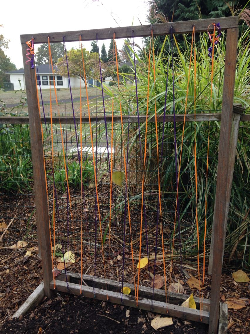 A touch of whimsy- using curling ribbon as a trellis