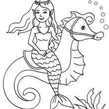 Mermaid On Seahorseback Coloring Page
