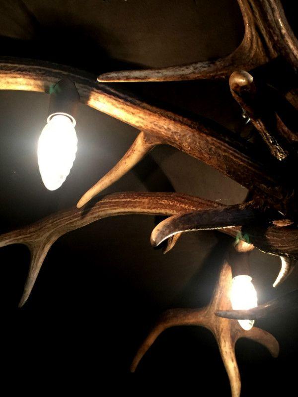 Deckenleuchte Hirschgeweih, Geweih Lampe, Geweih Leuchter, Geweih - hirschgeweih deko wohnzimmer