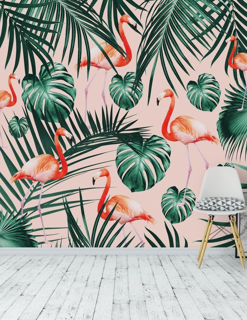 Tropical Flamingo 2 Wallpaper From Happywall Com Flamingo Room Decor Mural Wallpaper Tropical Wallpaper