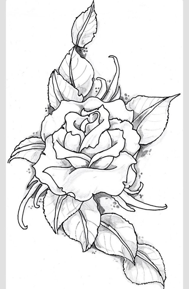 Discover ideas about flower tattoo drawings
