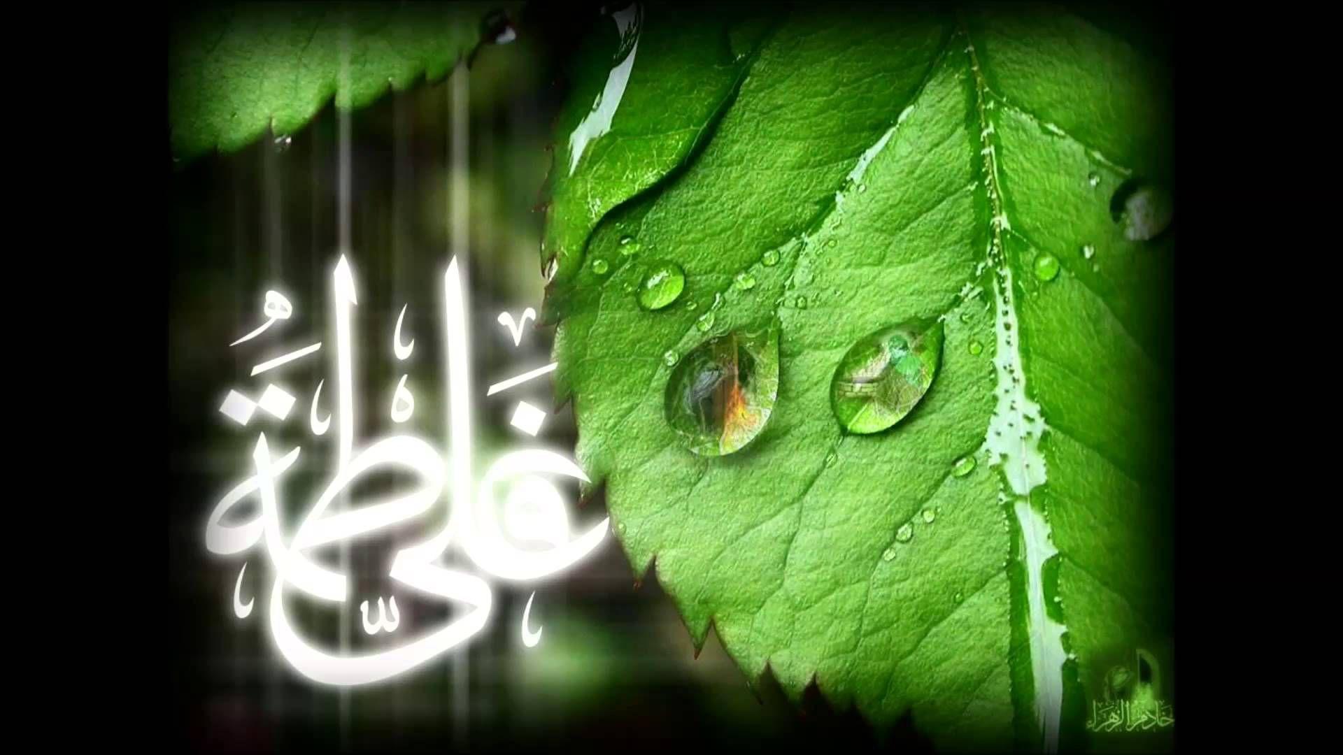 Dua Kumail دعاء كميل بصوت الشيخ باقر المقدسي Plant Leaves Plants Imam Ali
