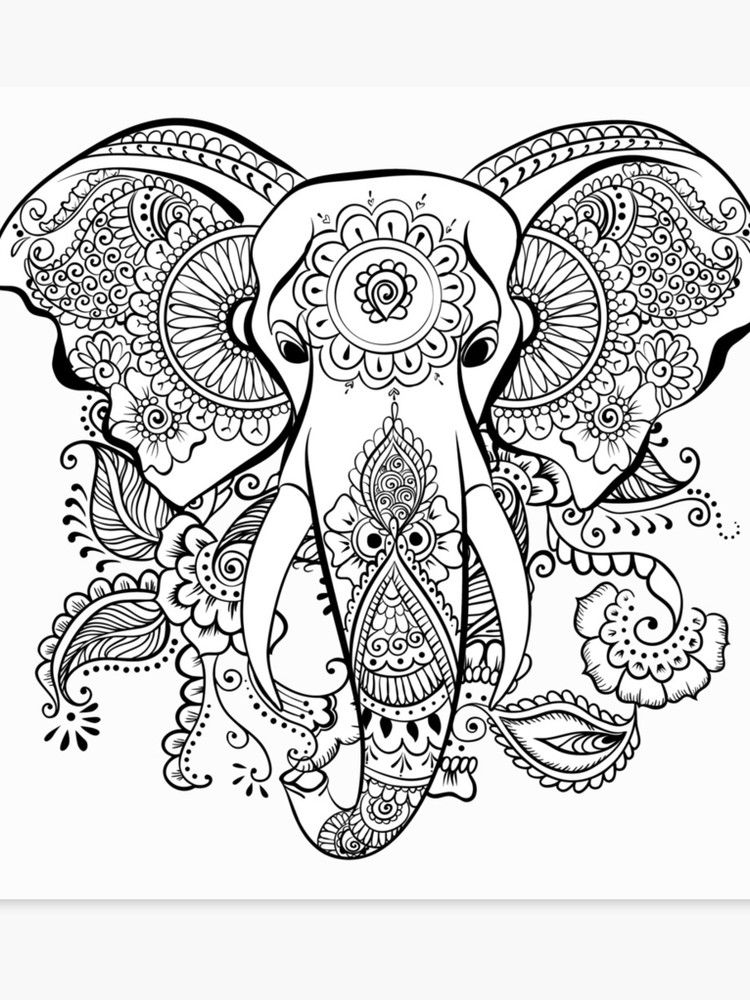 Elephant Maori Canvas Print By Lilawonderland In 2021 Elephant Coloring Page Mandala Coloring Pages Mandala Coloring Books