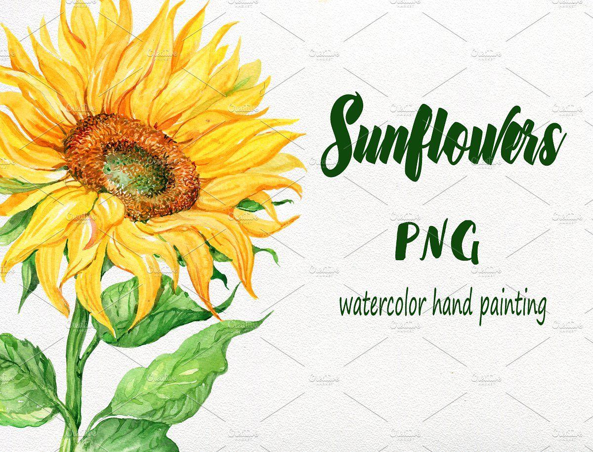Sunflowers Watercolor Watercolor Sunflower Watercolor Floral