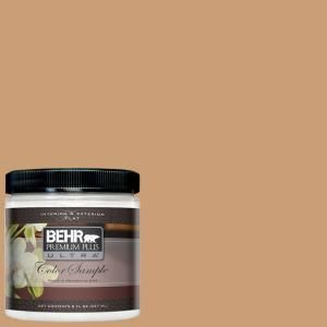 Pumpkin Butter Behr Paint Samples Behr Behr Premium Plus Ultra