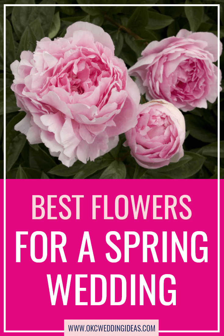 Best Flowers For A Spring Wedding Okc Wedding Ideas Wedding