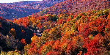 Great East Coast Hikes for the Fall Season - The Manual | The Manual