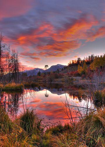 Fall Vs Sunset Beautiful Nature Beautiful Landscapes Scenery
