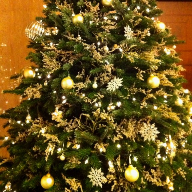 The Tradition Of Christmas Trees: Baby's Breath In Xmas Tree. Mum And I Did This With Tree