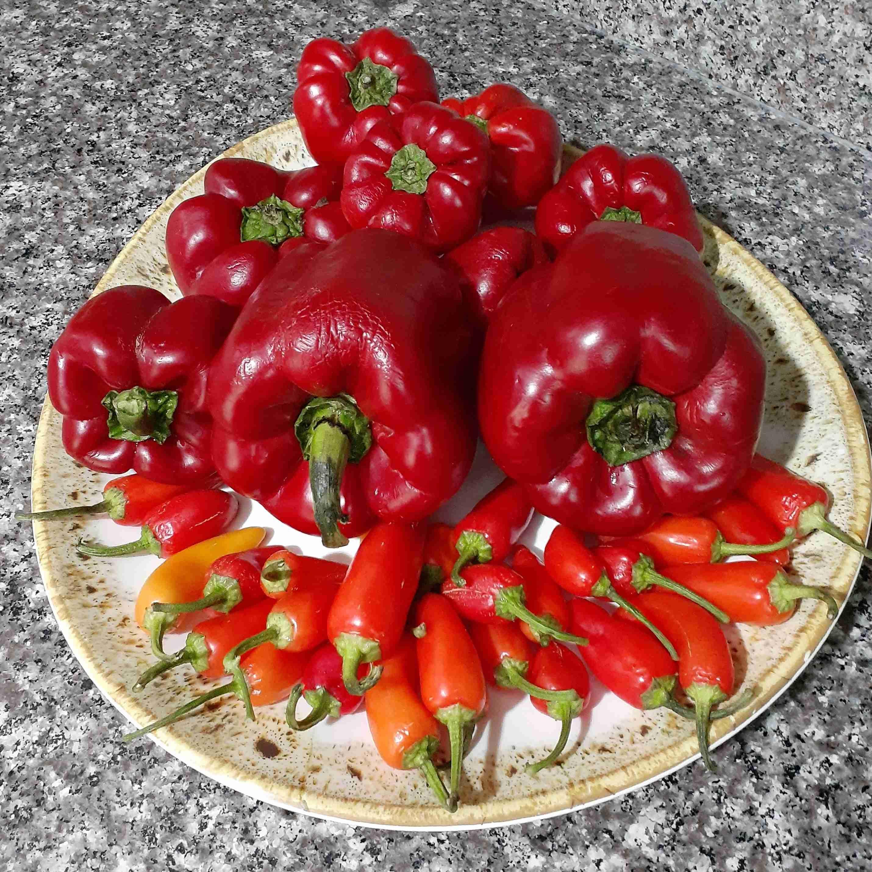 طريقة عمل الشطة دبس فليلفة ملكة رمضان زاكي Recipe Arabic Food Stuffed Peppers Food